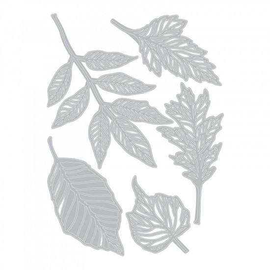 Sizzix Thinlits Die Set 5τεμ - Skeleton Leaves